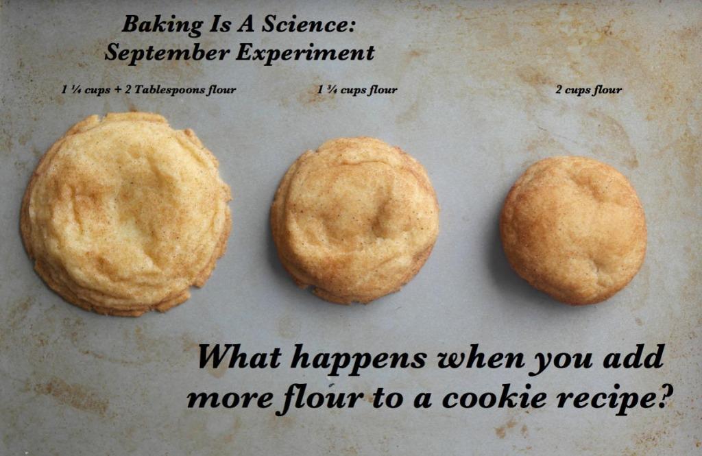 Cookie Flour Experiment