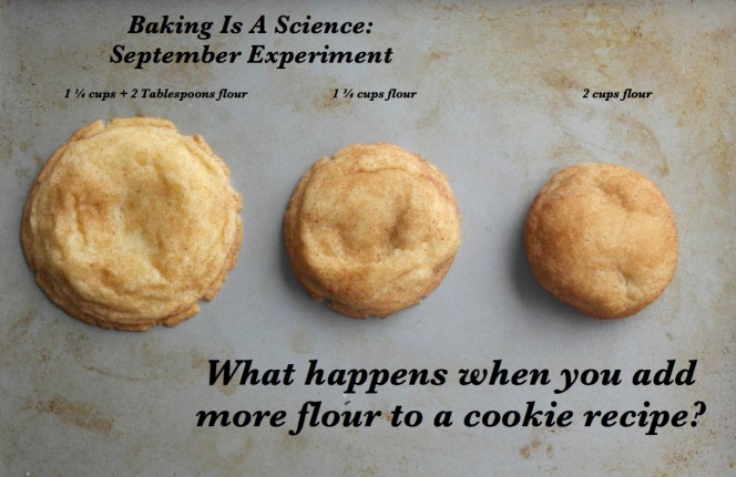 Cookie Flour Experiment