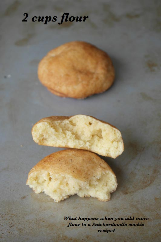 Snickerdoodle Flour Experiment
